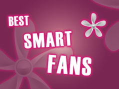The Best Smart Fans to Keep Cool This Summer