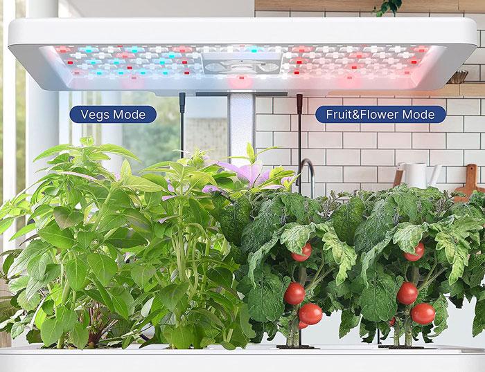 iDOO indoor Garden - Veggie, Fruit and Flower Mode
